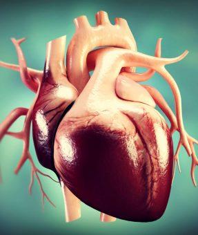 Aort-Kapak-Hastaliklari2